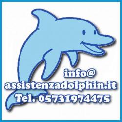 9995705 Ricambio Robot Pulitore Piscina Manico Dolphin Flipper 2.0