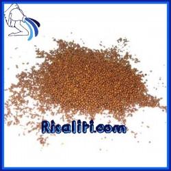 Resina Cationica Forte Addolcimento Sfusa al litro depurazione Addolcitore acqua