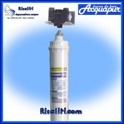 Depuratore purificatore acqua Acquapur W2P 11k 11000 litri testata